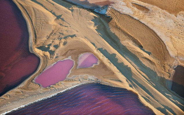 Aerial view of salt ponds, Walvis Bay, Namibia. Photo by Frans Lanting/National Geographic