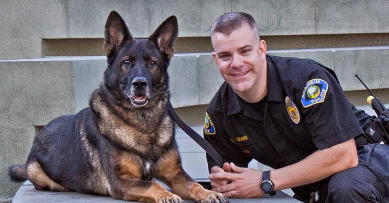 cute_policedog.jpg