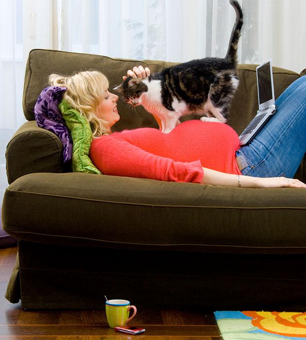 kittycom.jpg