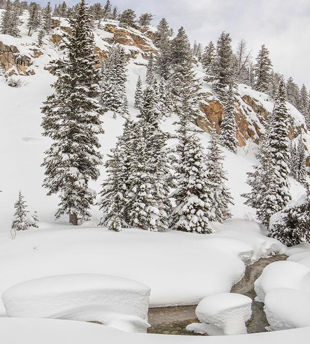 mtn-snow.jpg