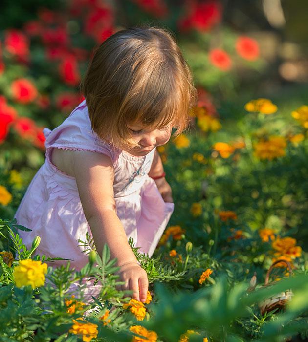 toddlergirl-in-garden.jpg