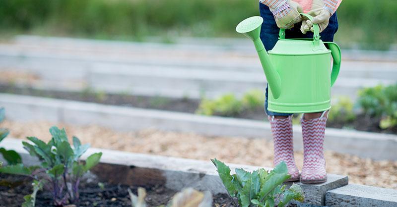girl-watering-plants-thumb.jpg