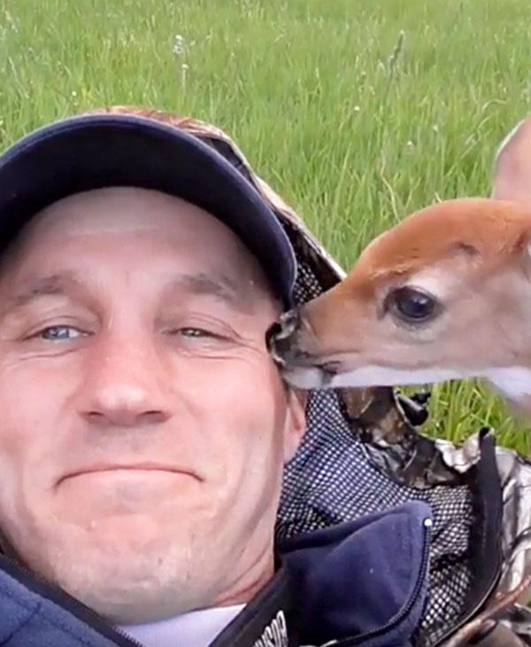 cute-animals-wild-rescue-deer-friends.jpg
