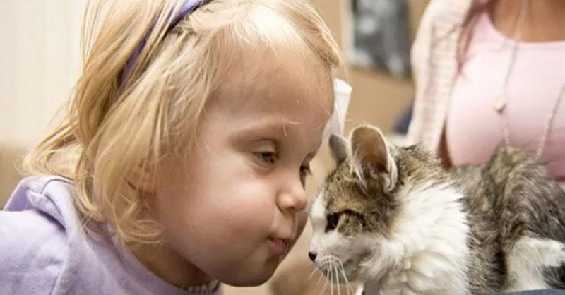 cute-kid-cat-thumb.jpg