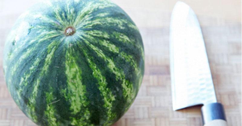 cute-watermelon-thumb.jpg