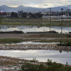 Border fence impact on wetland mixed