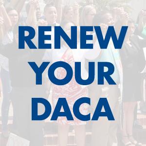 renew-DACA-tiles.png