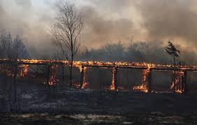 Burning_Fence_kansas_fire.jpeg