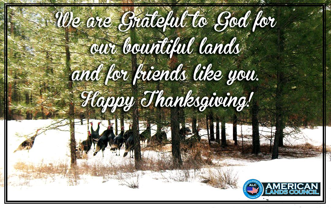 thanksgivingmeme3.jpg