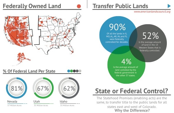 IMAGE-Infographic.jpg