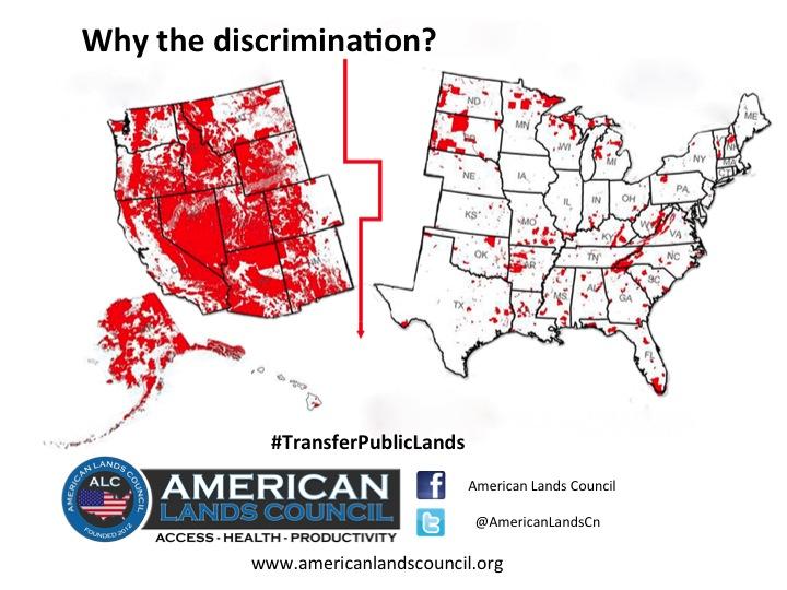 Discrimination_Meme.jpg