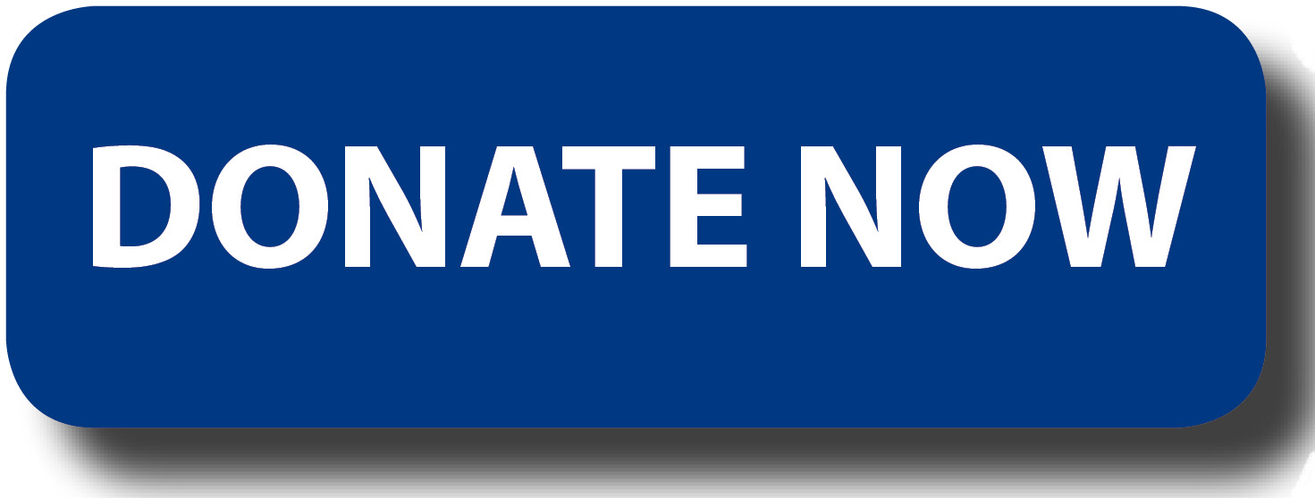 donate-button-logo-blue-rectangle.jpg