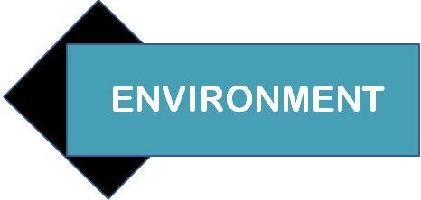 environmentnew.JPG