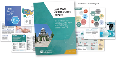 A collage depicting example pages from the 2019 State of the States report