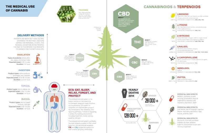Infographic illustrating medical cannabis usage
