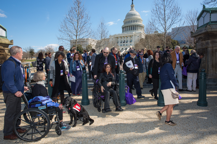 A group of A.S.A. advocates standing outdoors in front of the US Capitol Building. The are in transit walking with coats on. The day is bright and sunny but the trees are bare of leaves. In the foreground a woman is being pushed in a wheelchair by a man. A support dog is next to them.