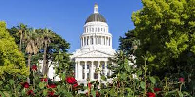 CA Capitol from the Rose Garden