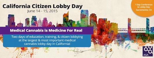 CA Lobby Day banner