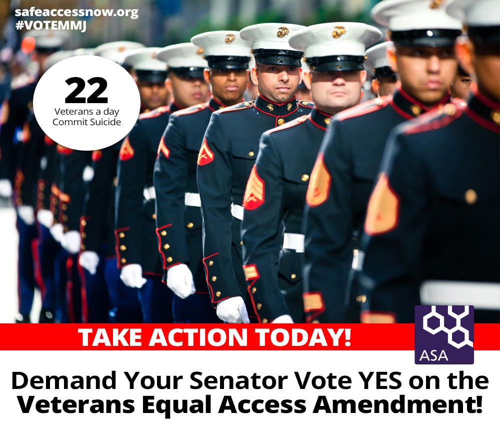 Veterans_Congress_Action_Alert.jpg