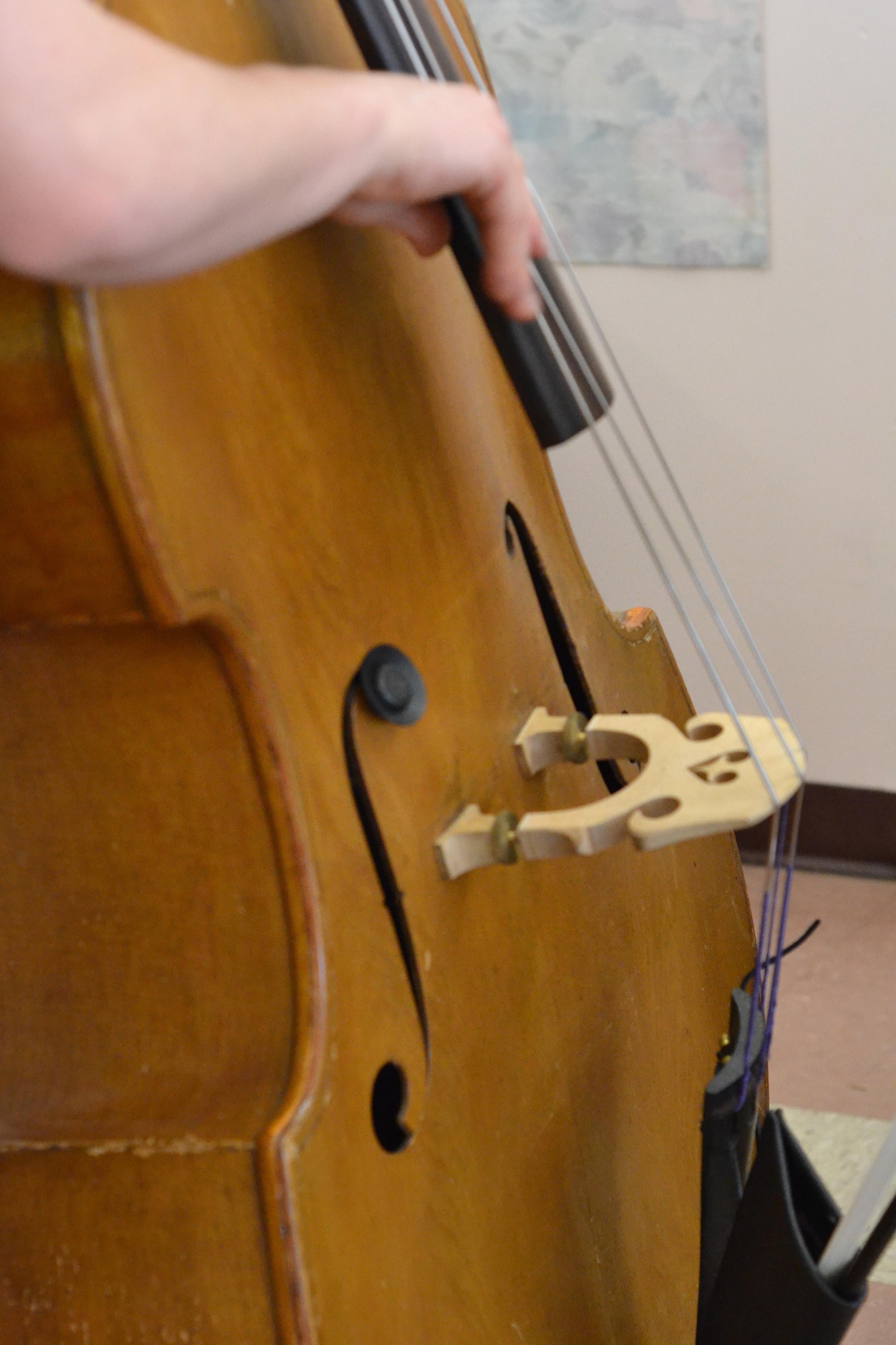 Eli Heath Trio Bass Player. [photo credit: Rebekah Hanlon]