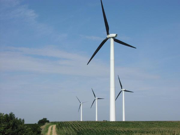 Members' plea to Senators on windtowers