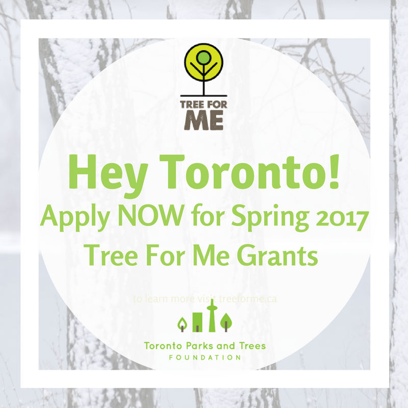 Tree_for_Me_Grant_-_Jan_2016_Promo.png