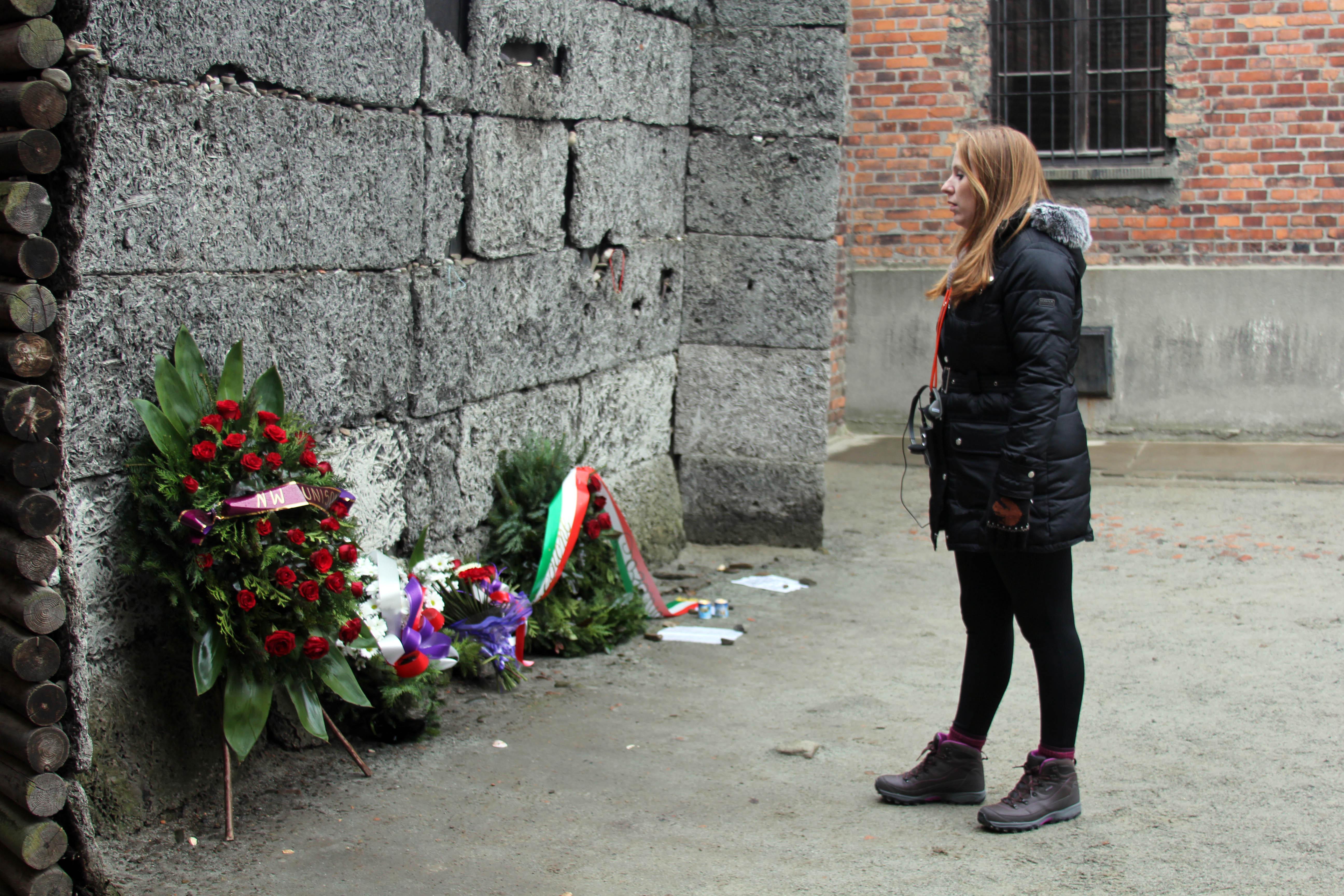 AR-Auschwitz-Jan-2015.jpg