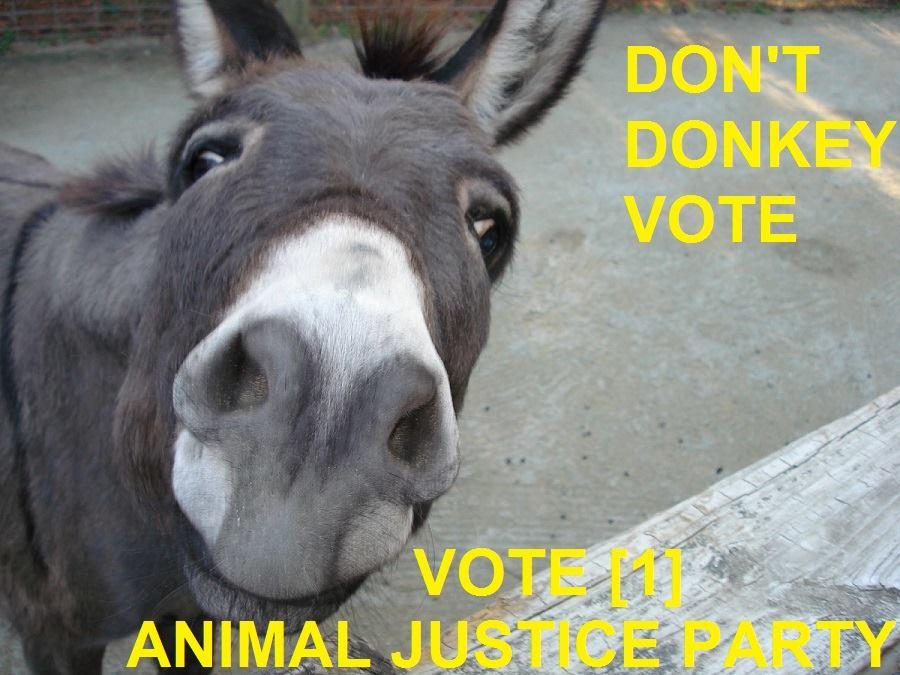 Donkey_Vote.jpg
