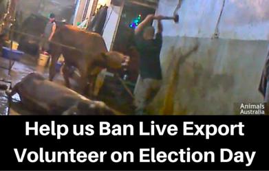 Help_us_Ban_Live_Export2.png
