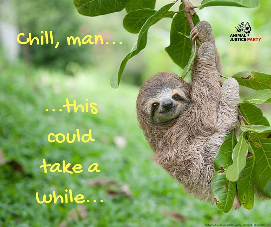 Chill_man_.jpg