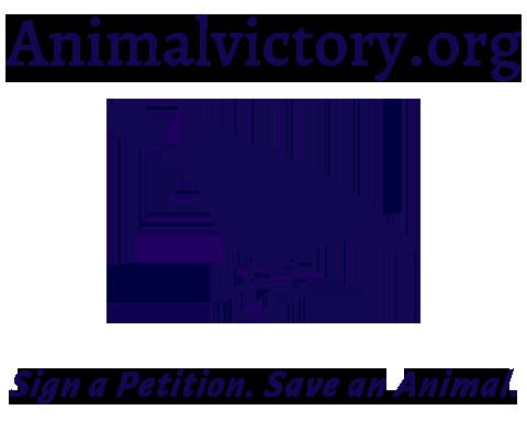 Animal Victory
