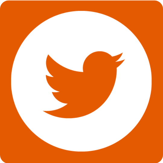 Twitter_social_icons_-_circle_-_white.png