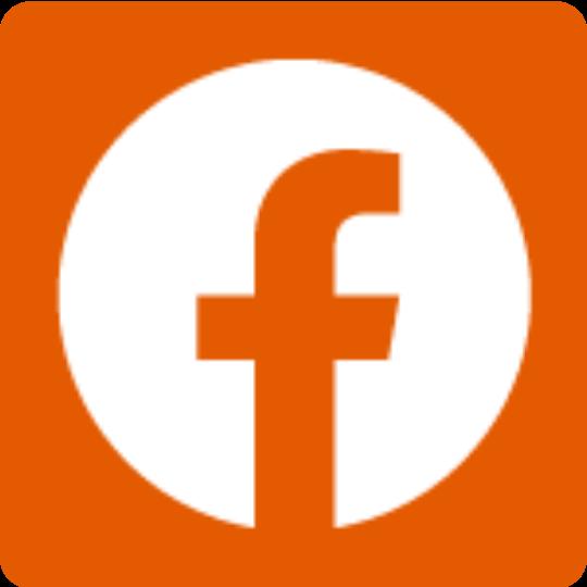 f_logo_RGB-White_58.png