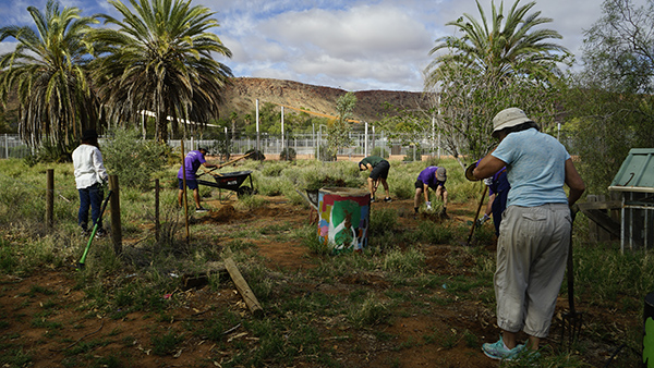 Westside Community Garden Alice Springs