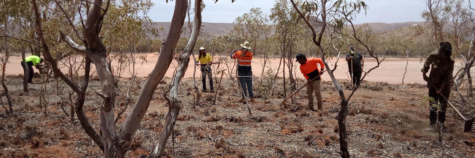 Arid Edge Environmental Services