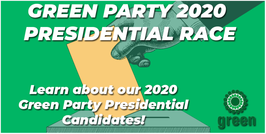 2020 Arizona Green Party Presidential nomination process