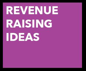 revenueraising.png