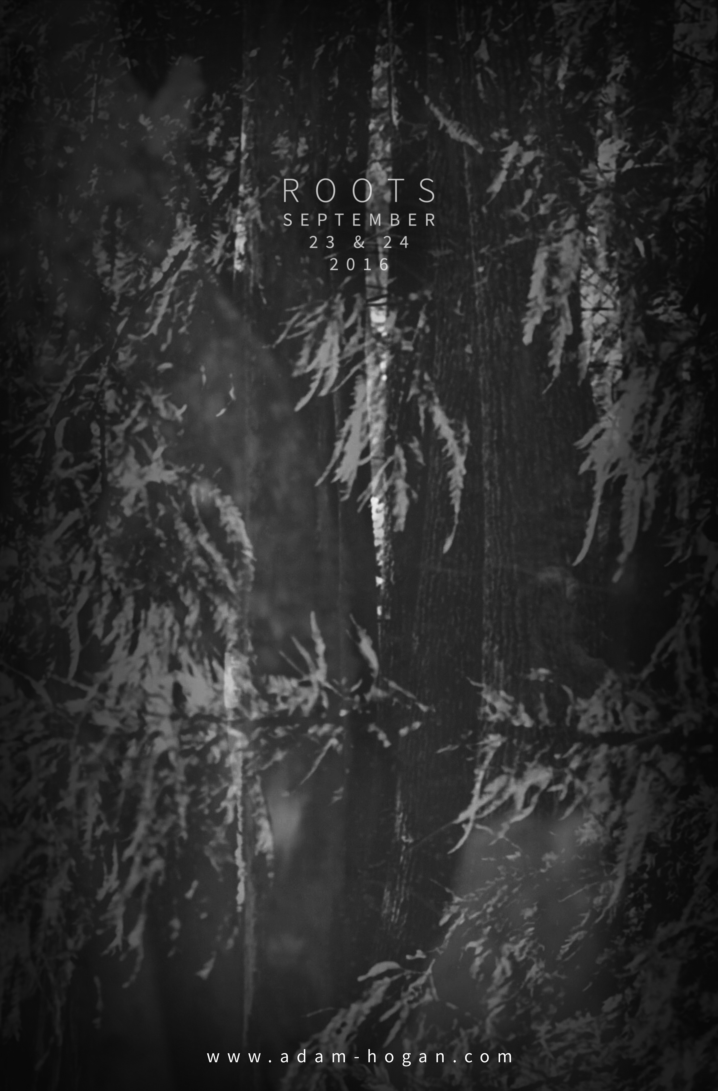 Roots_(poster)_web.jpg