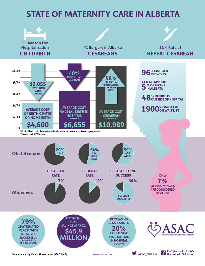 Maternity Care Report Infographic