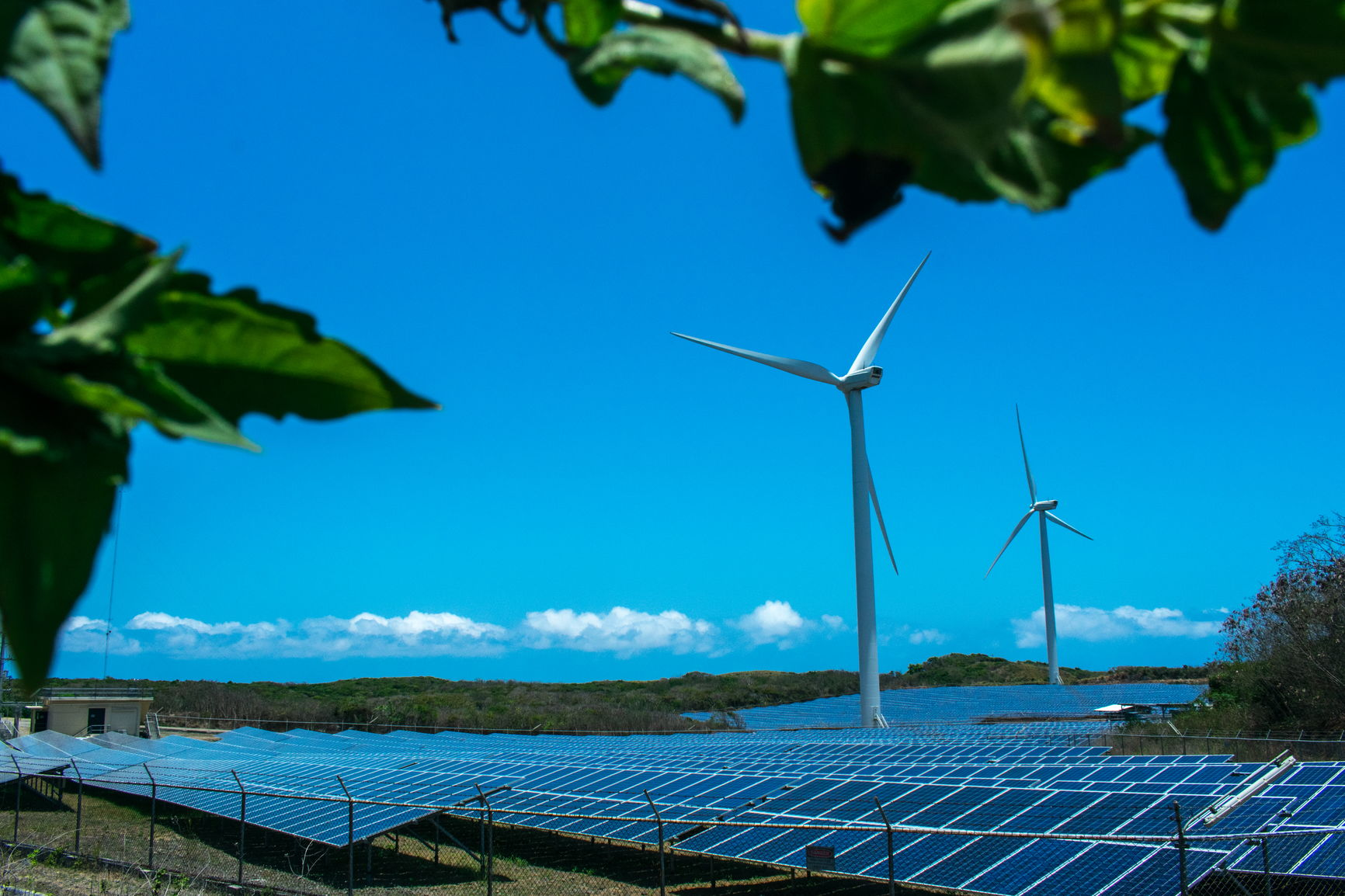 Emergence of Wind and Solar Power