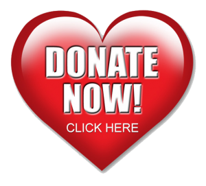 heart-donation-button-300x271.png