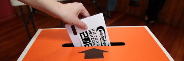 Smokefree 2025 candidate survey