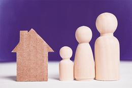 Domestic Violence Renting Reform