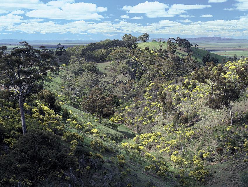 post_Southern_Flinders_Ranges.jpg