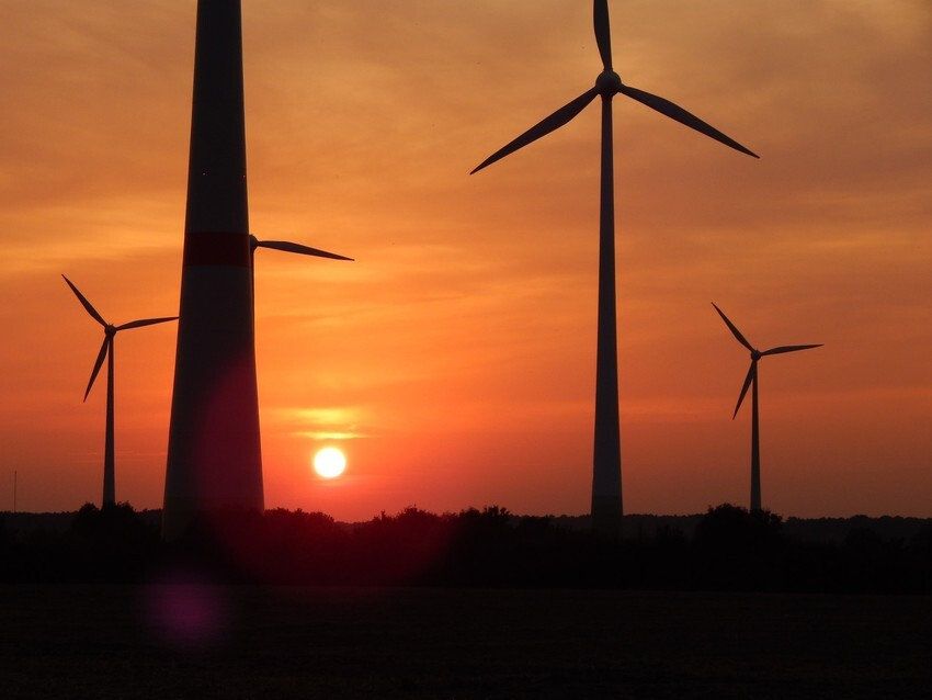 Wind turbine park