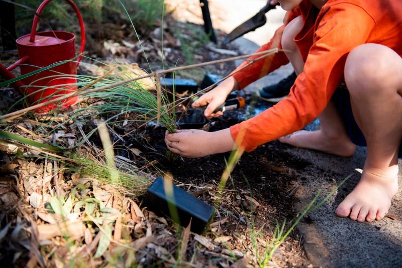 Kid_planting.jpg