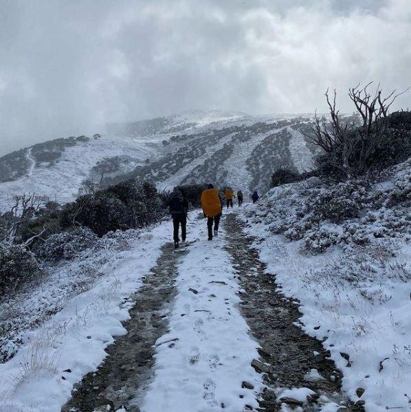 Mount Hotham snow