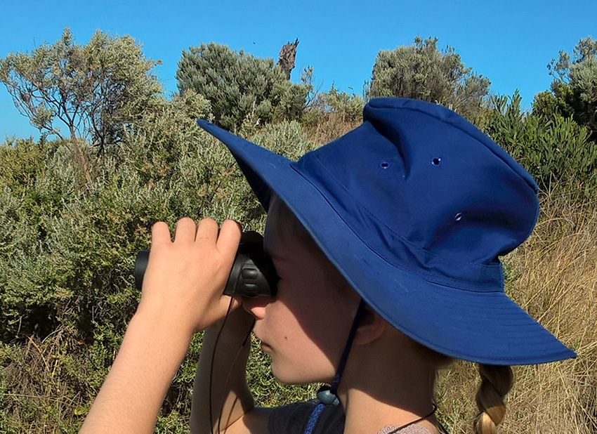 block_binoculars.jpg