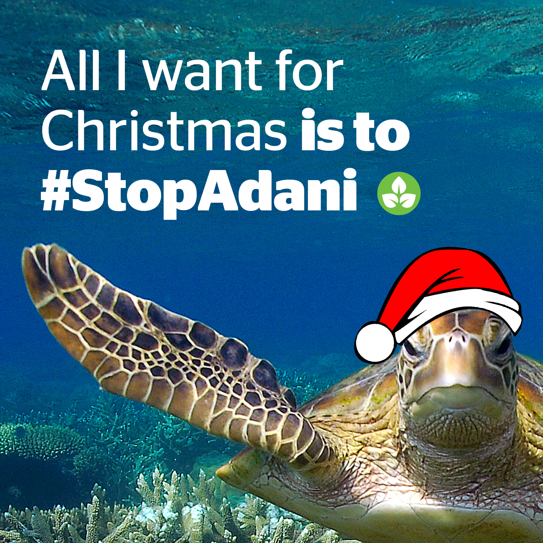 All I want for Christmas is to Stop Adani!