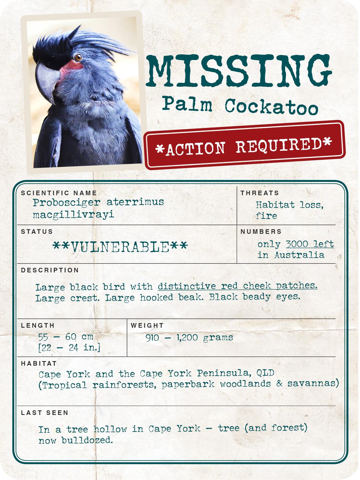 Missing_Creature_Report__600px_web.jpg
